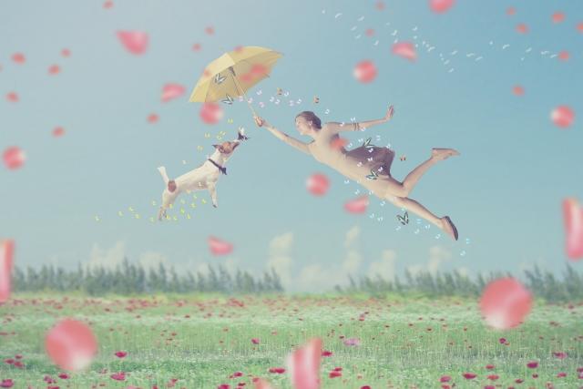 犬と傘をさしている女性が飛んでいる