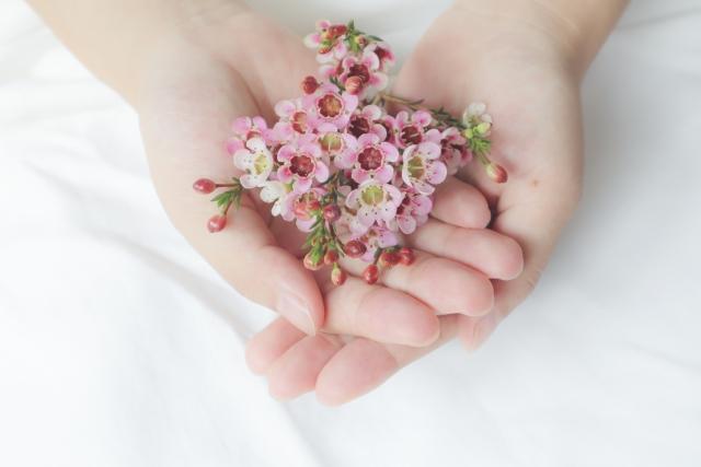 うまくいかないときに花を両手に包み渡してくれた女性の手の画像
