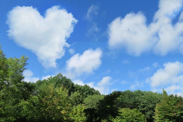 綺麗な空と緑の画像