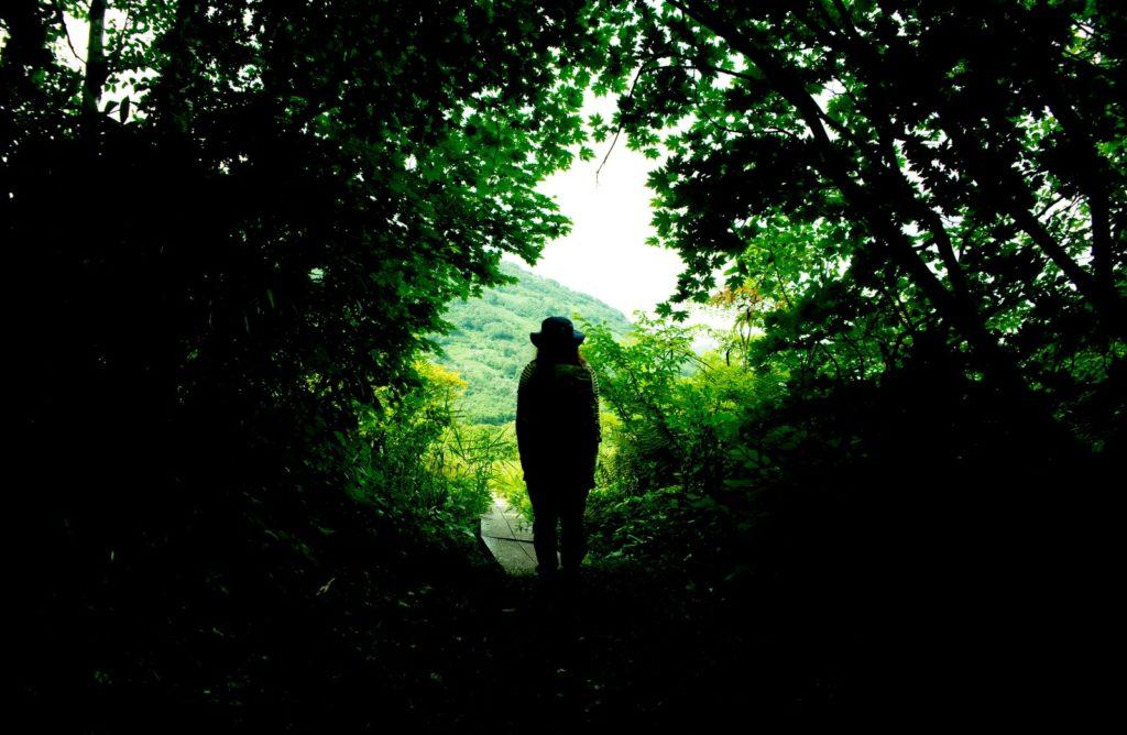 森の中で一人で散歩している女性の画像