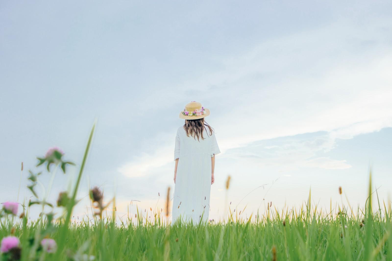 占いに依存して芝生の真ん中で途方に暮れている女性の後ろ姿の画像