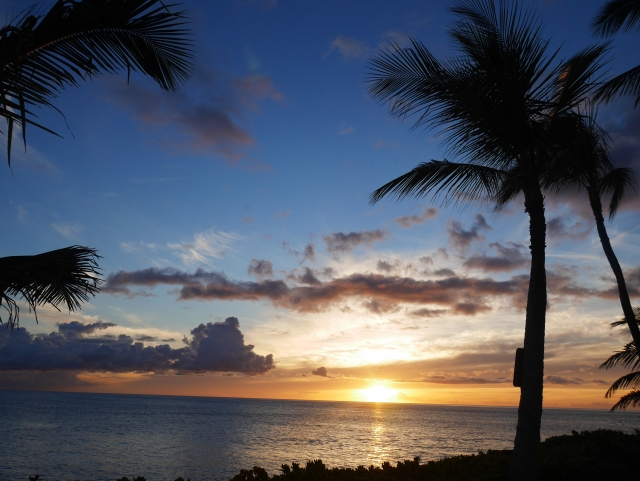 夕日に照らされた海の画像