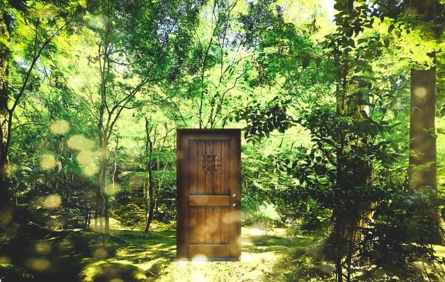 森林の中に不思議な扉がある画像