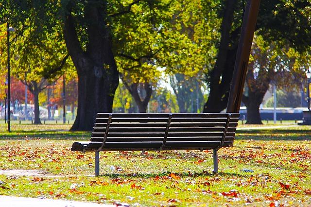 公園の中にあるベンチの画像