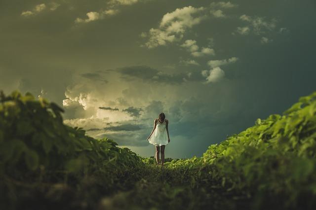 山の丘の上で立っている女性の後ろ姿の画像