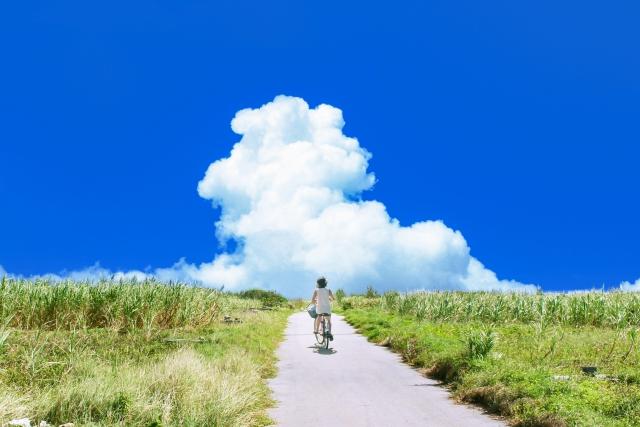 田舎道を自転車で走る女性の後ろ姿の画像