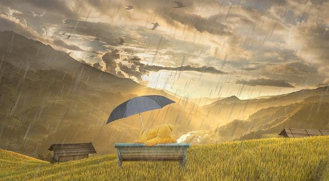 雨の中のベンチでテディベアが傘をさして座っている画像