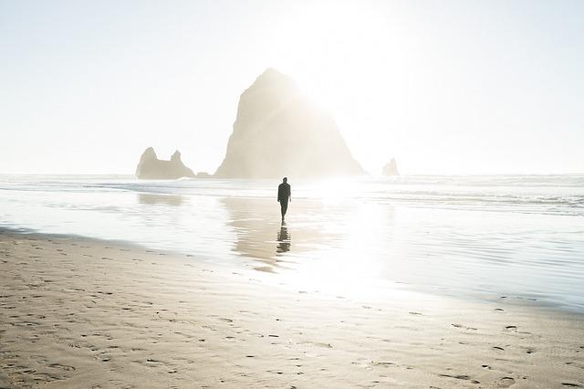 晴れた海を歩いている人の画像