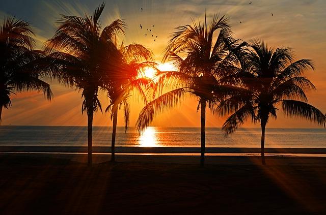 夕日に染まる海の画像