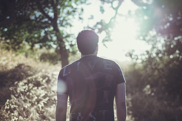 一人で森林の中に癒されに来た男性の後ろ姿の画像