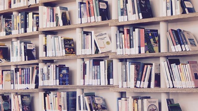 本がたくさん並べられた本棚の画像