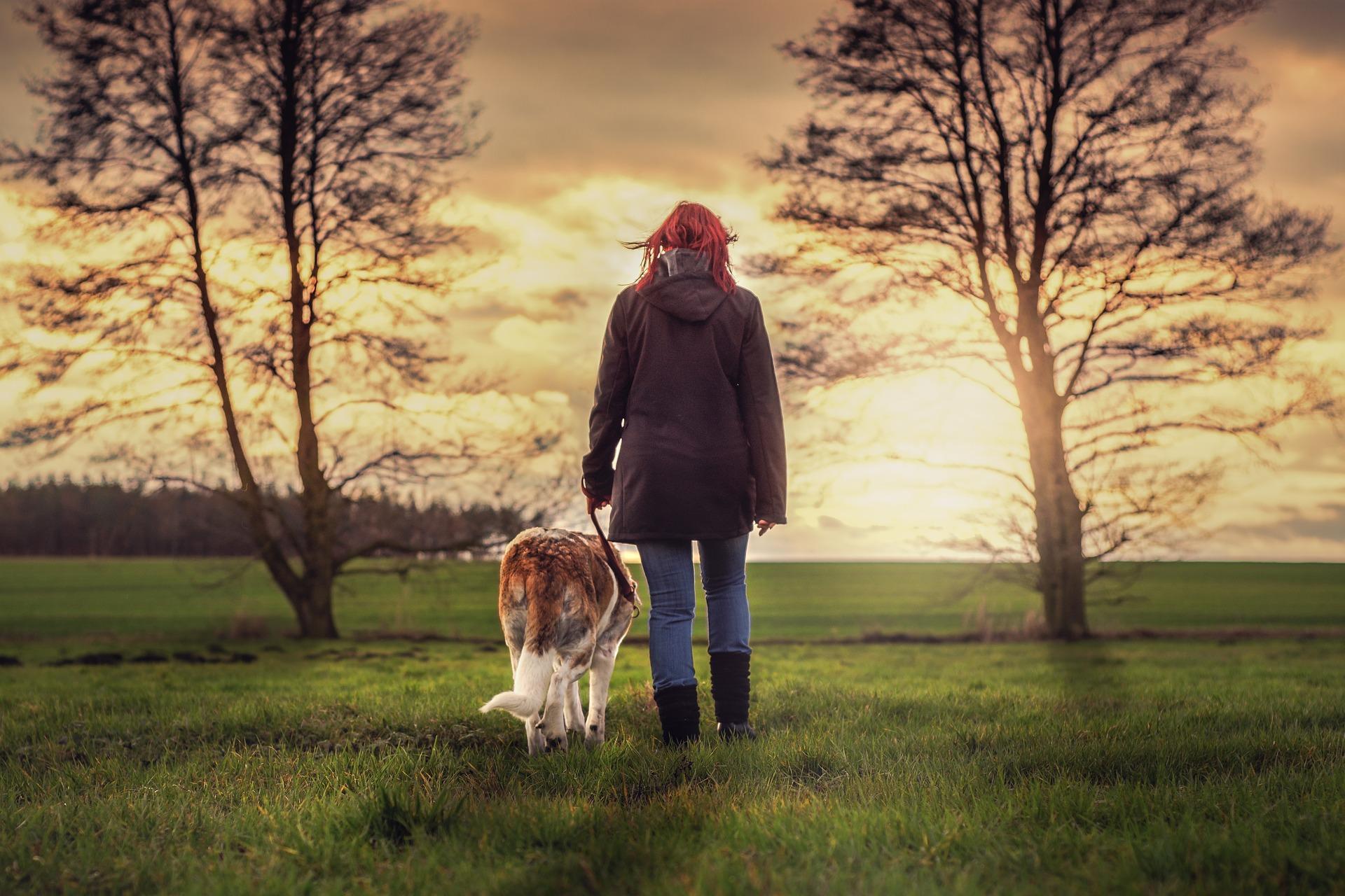 30代の女性が犬と散歩している画像