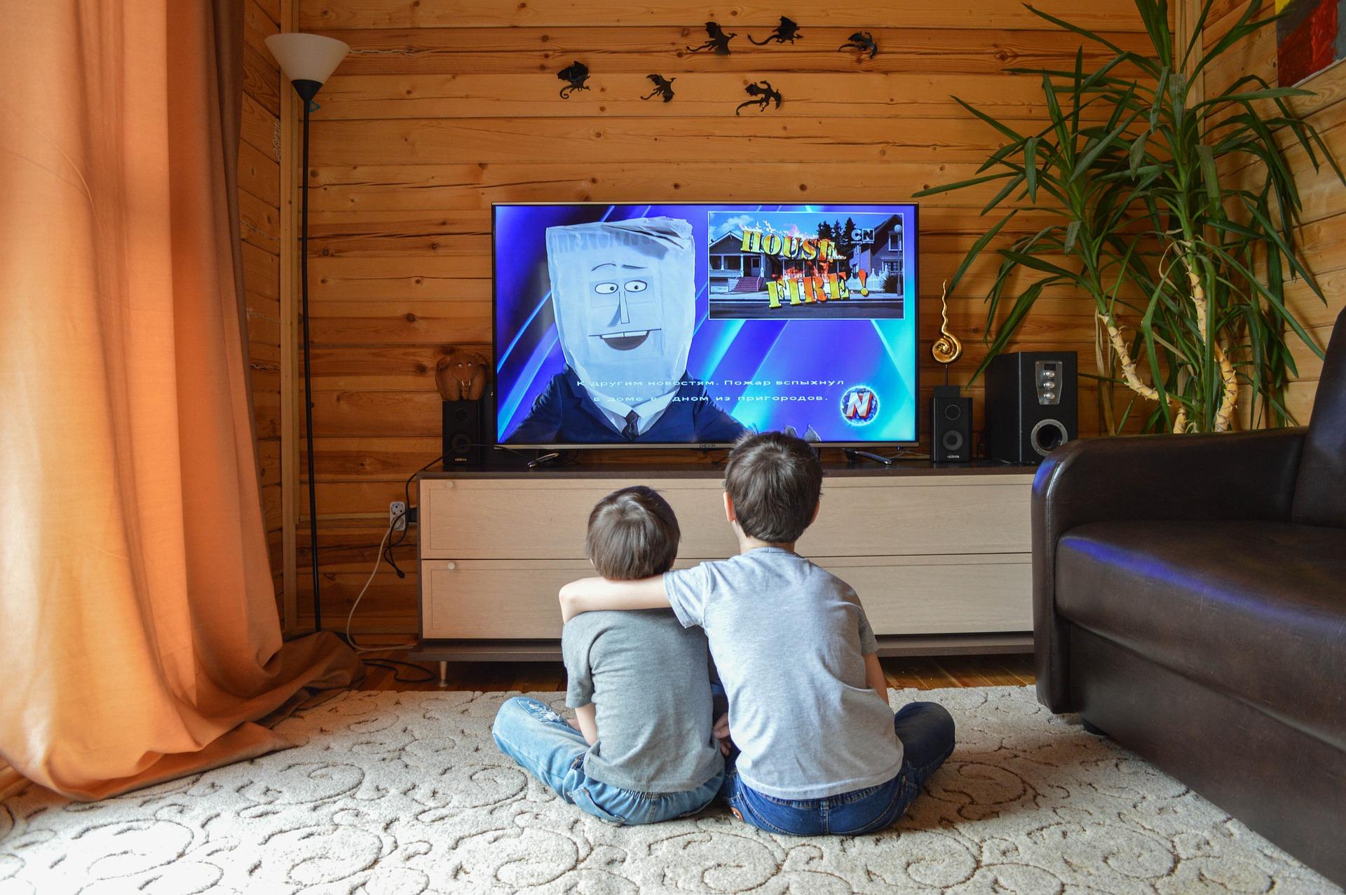 映画鑑賞している子供二人の後ろ姿の画像